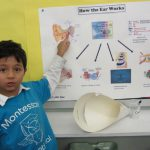 Science Fair 2012 - LJ